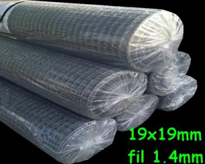 Grillage 19x19 fil 1.4mm 1x25m