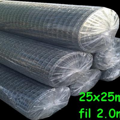 Grillage 25x25 fil 2.05mm 1x30m