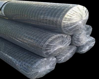Grillage 25x25 fil 1.4mm 1x25m